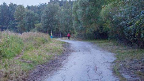 Озеро шарташ дорожка дорога вело