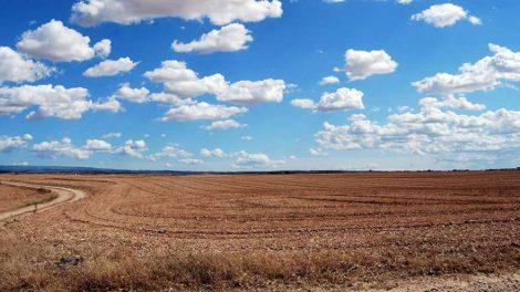 паханое поле посевы сельское хозяйство сельхоз угодья